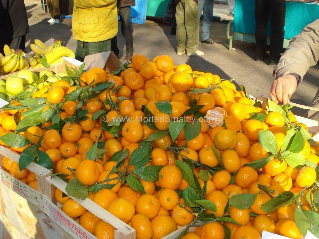 mercato verde a spalato