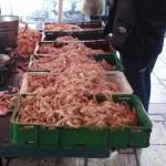 pescheria a Spalato3