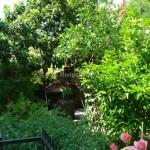dubrovnik-foto-giardino